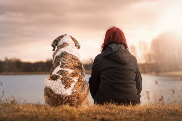 Οι σκύλοι καταλαβαίνουν τα λόγια και τη χροιά της φωνής μας